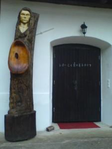 Poplar, 3.5 m tall, 2004